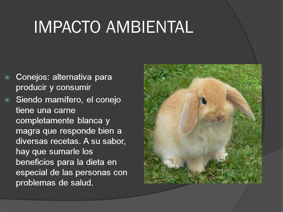 IMPACTO AMBIENTAL Conejos: alternativa para producir y consumir Siendo mamífero, el conejo tiene una carne completamente blanca y magra que responde bien a diversas recetas.