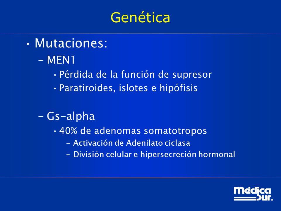 Genética Mutaciones: –MEN1 Pérdida de la función de supresor Paratiroides, islotes e hipófisis –Gs-alpha 40% de adenomas somatotropos –Activación de A
