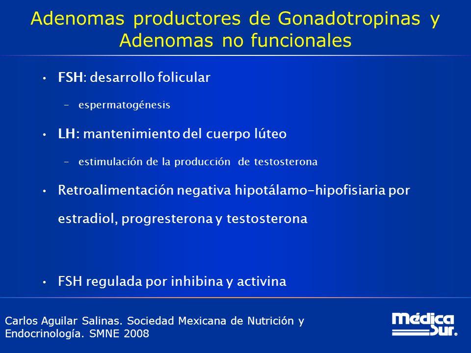 Adenomas productores de Gonadotropinas y Adenomas no funcionales FSH: desarrollo folicular –espermatogénesis LH: mantenimiento del cuerpo lúteo –estim