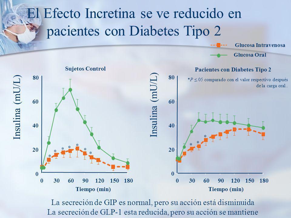 El Efecto Incretina se ve reducido en pacientes con Diabetes Tipo 2 0 20 40 60 80 Insulina (mU/L) 0306090120150180 Tiempo (min) * * * * * * * 0 20 40 60 80 0306090120150180 Tiempo (min) * * * *P.05 comparado con el valor respectivo después de la carga oral..