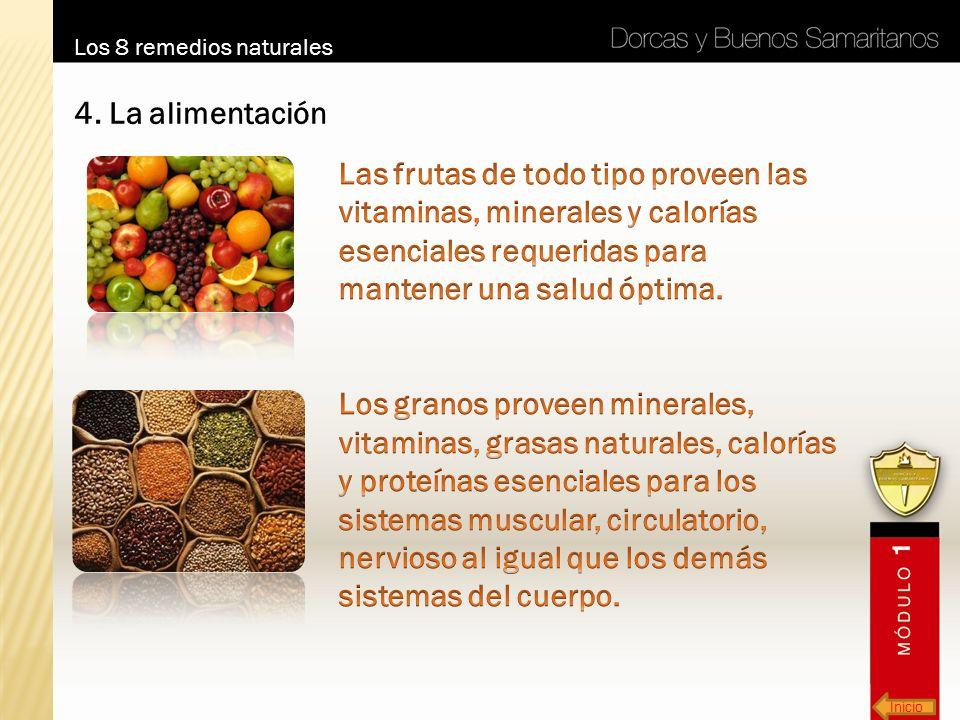 Inicio Los 8 remedios naturales 4. La alimentación