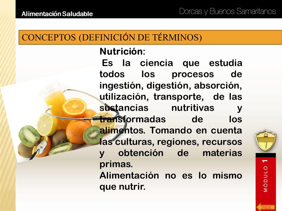 Inicio Alimentación Saludable CONCEPTOS (DEFINICI Ó N DE T É RMINOS) Nutrición: Es la ciencia que estudia todos los procesos de ingestión, digestión,