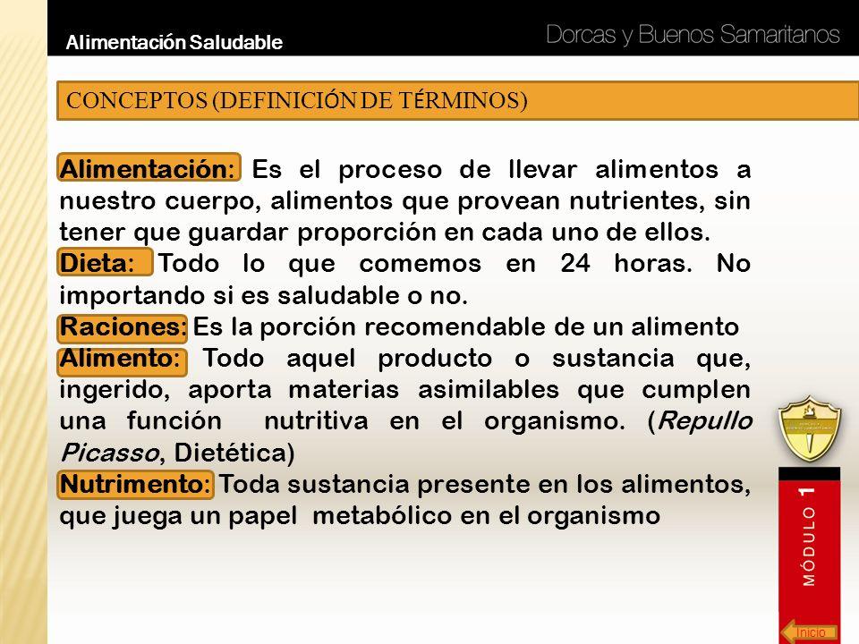 Inicio Alimentación Saludable CONCEPTOS (DEFINICI Ó N DE T É RMINOS) Alimentación: Es el proceso de llevar alimentos a nuestro cuerpo, alimentos que p