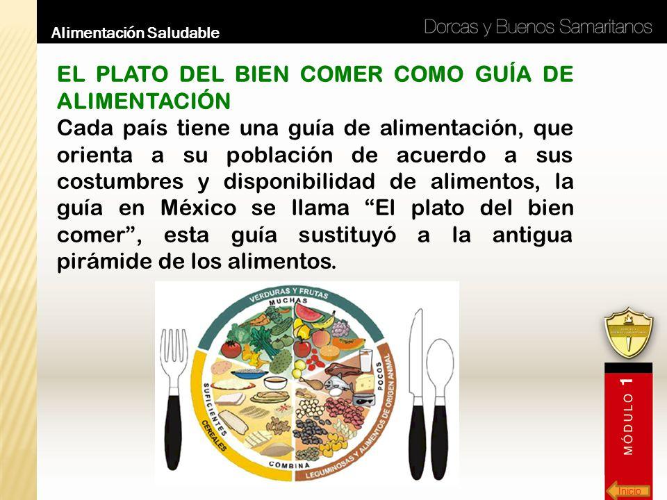 Inicio Alimentación Saludable EL PLATO DEL BIEN COMER COMO GUÍA DE ALIMENTACIÓN Cada país tiene una guía de alimentación, que orienta a su población d
