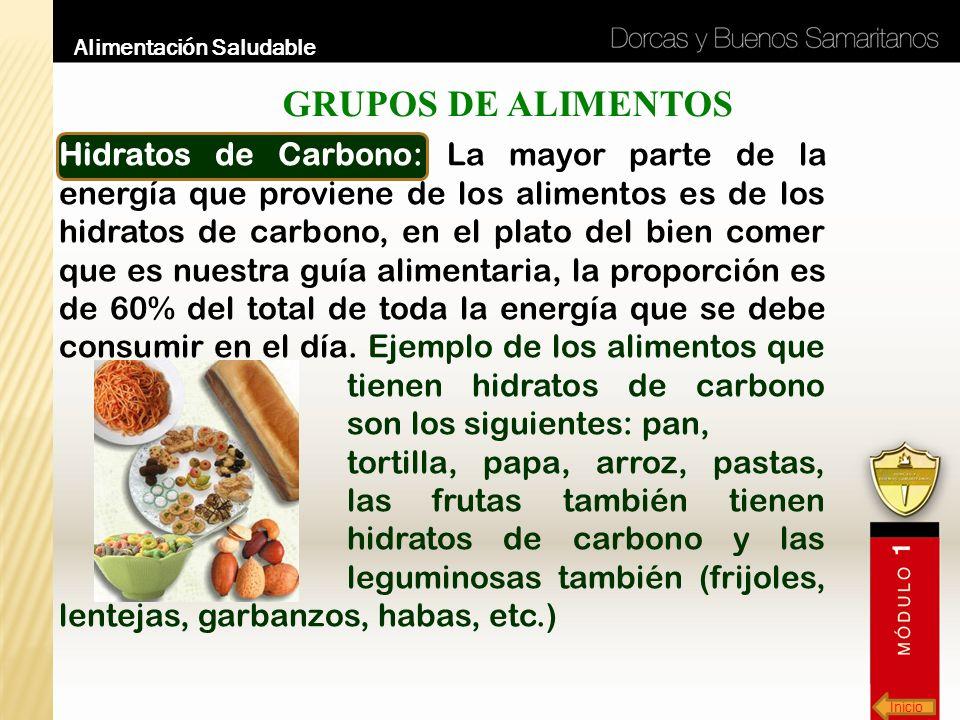 Inicio Alimentación Saludable GRUPOS DE ALIMENTOS Hidratos de Carbono: La mayor parte de la energía que proviene de los alimentos es de los hidratos d
