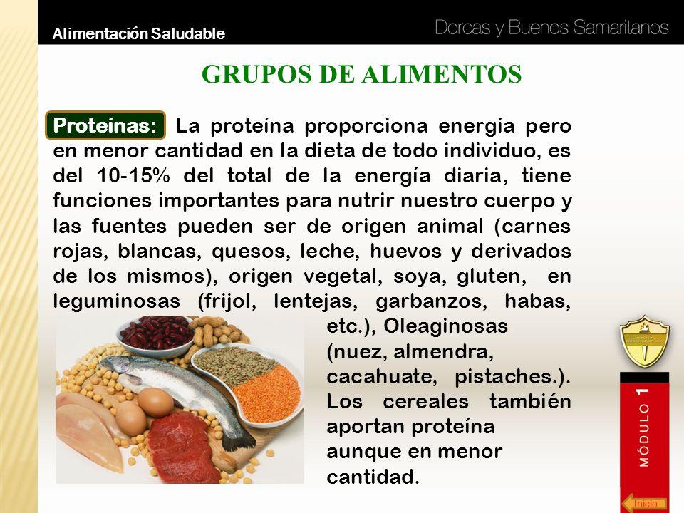 Inicio Alimentación Saludable GRUPOS DE ALIMENTOS Proteínas: La proteína proporciona energía pero en menor cantidad en la dieta de todo individuo, es