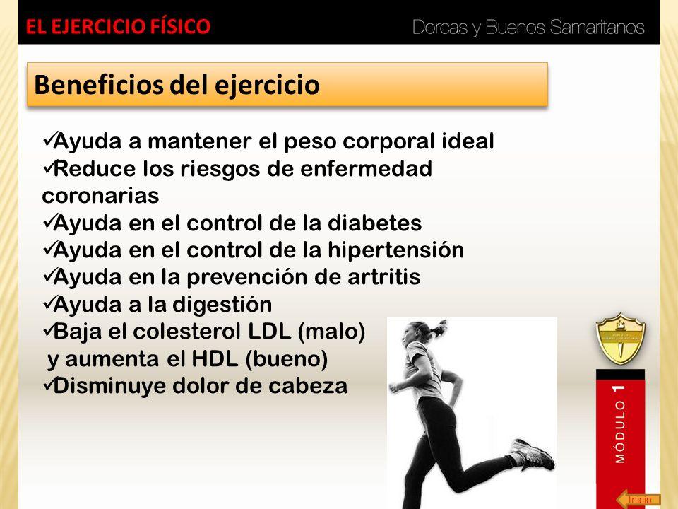 Inicio EL EJERCICIO FÍSICO Beneficios del ejercicio Ayuda a mantener el peso corporal ideal Reduce los riesgos de enfermedad coronarias Ayuda en el co