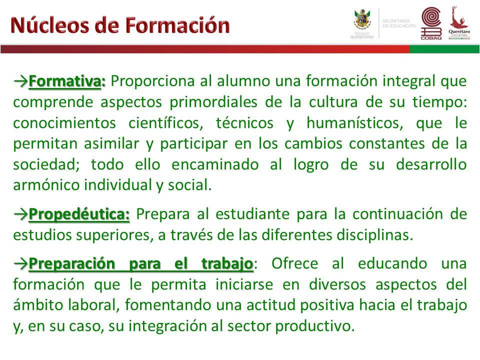 Formativa:Formativa: Proporciona al alumno una formación integral que comprende aspectos primordiales de la cultura de su tiempo: conocimientos cientí