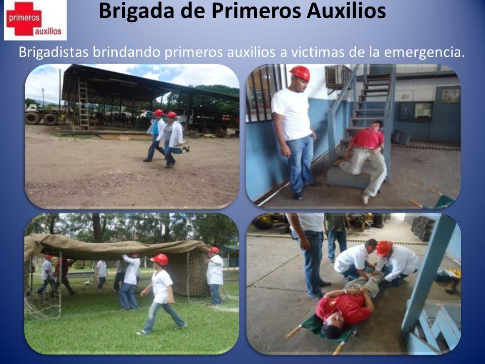 Brigada de Primeros Auxilios Brigadistas brindando primeros auxilios a victimas de la emergencia.
