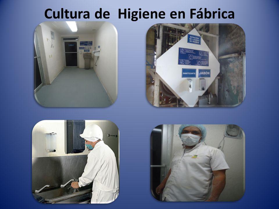 Cultura de Higiene en Fábrica