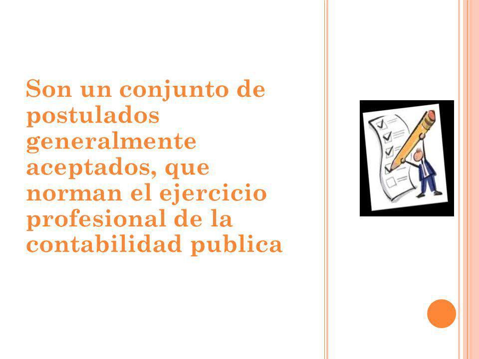 Son un conjunto de postulados generalmente aceptados, que norman el ejercicio profesional de la contabilidad publica