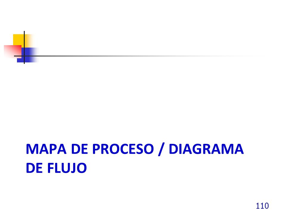 MAPA DE PROCESO / DIAGRAMA DE FLUJO 110