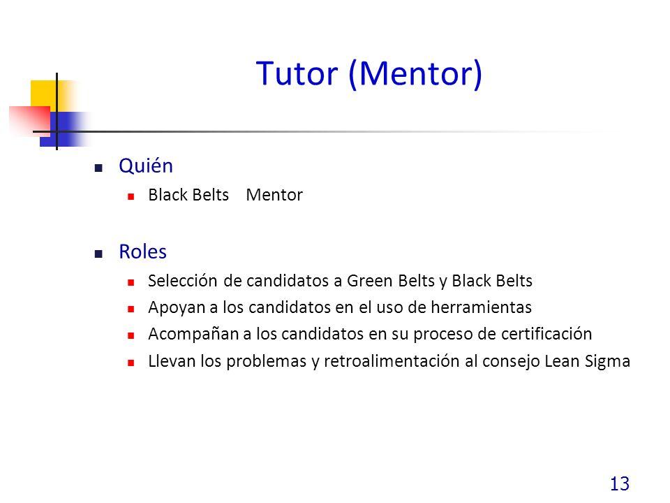 Tutor (Mentor) Quién Black Belts Mentor Roles Selección de candidatos a Green Belts y Black Belts Apoyan a los candidatos en el uso de herramientas Acompañan a los candidatos en su proceso de certificación Llevan los problemas y retroalimentación al consejo Lean Sigma 13