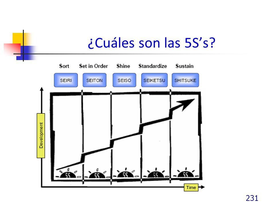 ¿Cuáles son las 5Ss? 231
