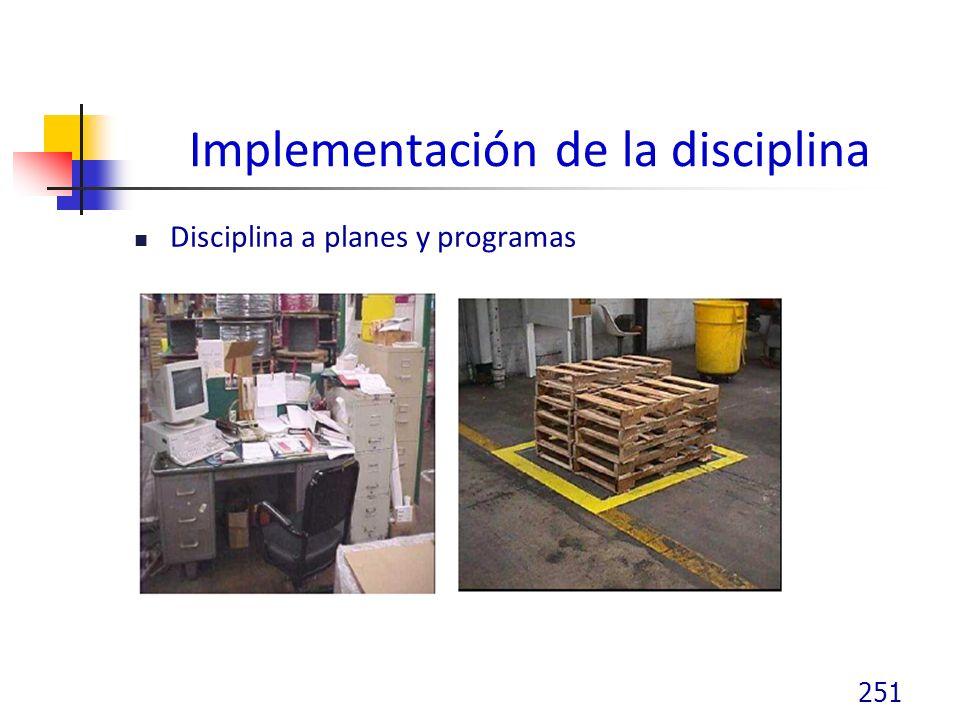 Implementación de la disciplina Disciplina a planes y programas 251
