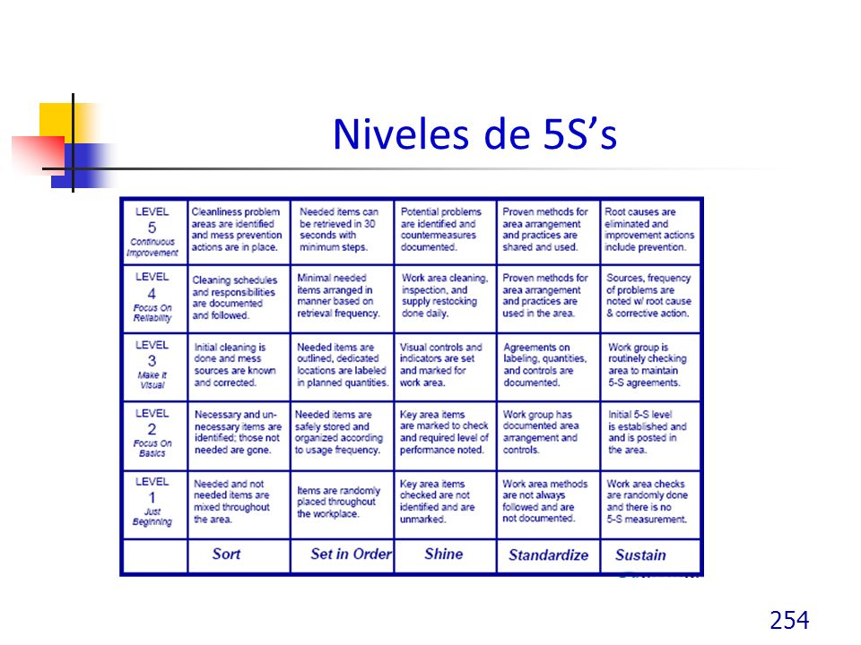 Niveles de 5Ss 254