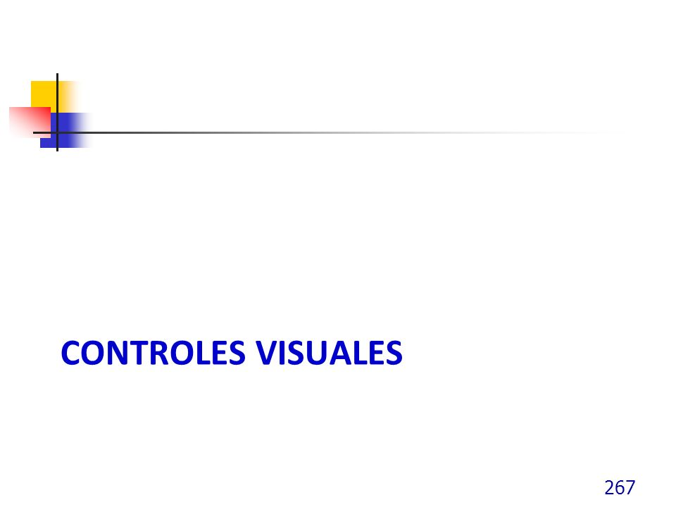 CONTROLES VISUALES 267