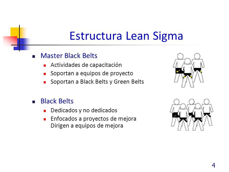 4 Estructura Lean Sigma Master Black Belts Actividades de capacitación Soportan a equipos de proyecto Soportan a Black Belts y Green Belts Black Belts Dedicados y no dedicados Enfocados a proyectos de mejora Dirigen a equipos de mejora