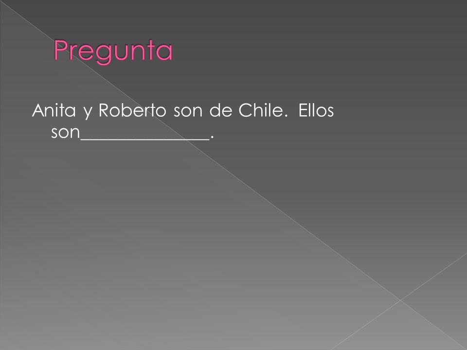 Anita y Roberto son de Chile. Ellos son______________.