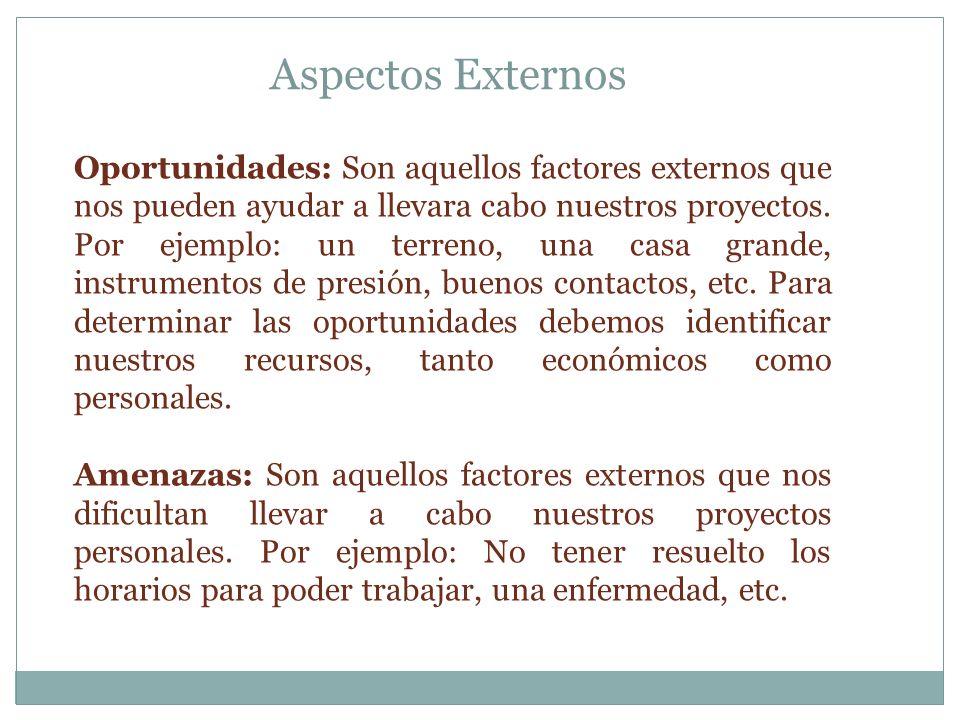 Oportunidades: Son aquellos factores externos que nos pueden ayudar a llevara cabo nuestros proyectos.