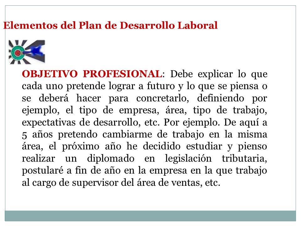 Elementos del Plan de Desarrollo Laboral OBJETIVO PROFESIONAL: Debe explicar lo que cada uno pretende lograr a futuro y lo que se piensa o se deberá hacer para concretarlo, definiendo por ejemplo, el tipo de empresa, área, tipo de trabajo, expectativas de desarrollo, etc.