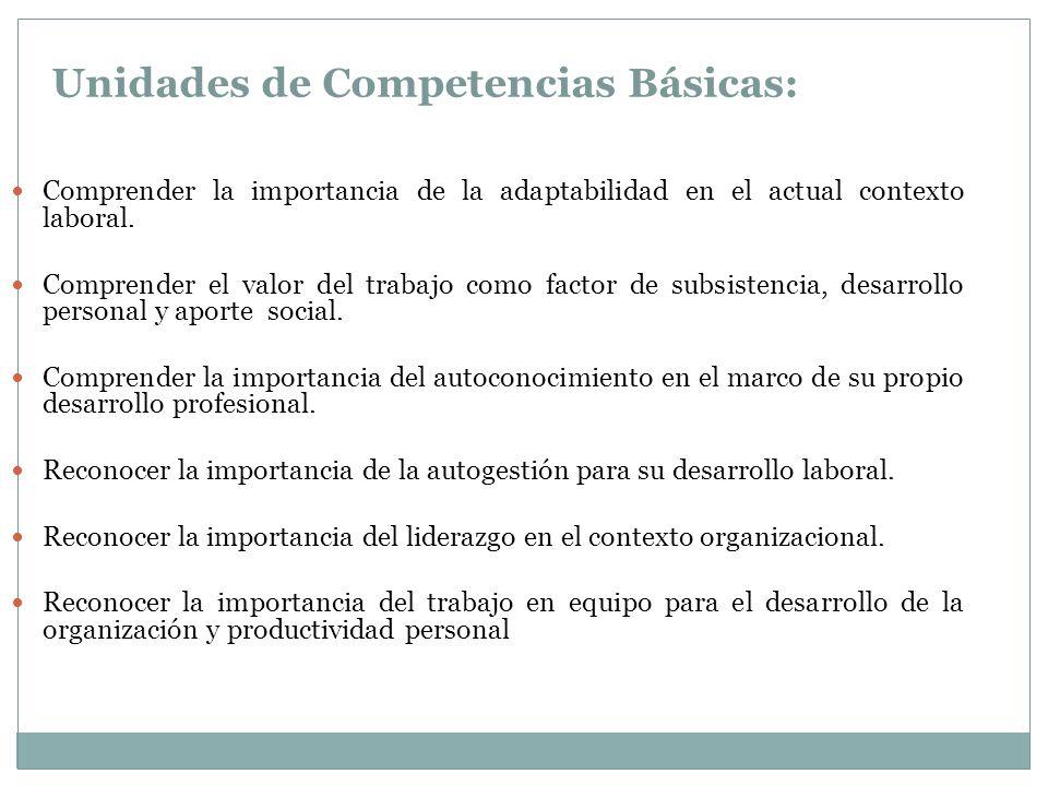 Unidades de Competencias Básicas: Comprender la importancia de la adaptabilidad en el actual contexto laboral.