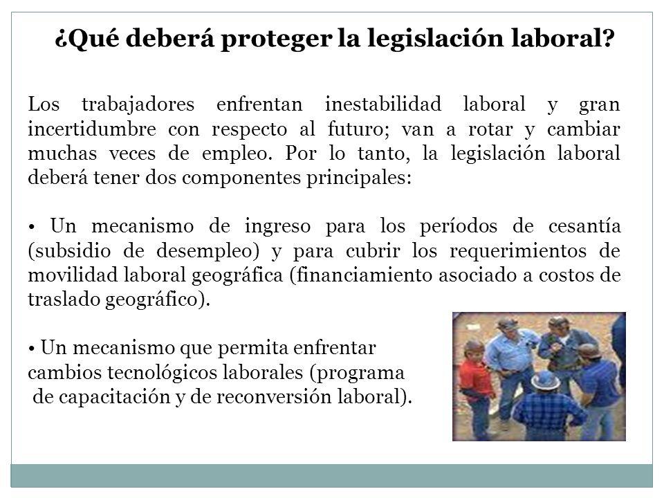 Los trabajadores enfrentan inestabilidad laboral y gran incertidumbre con respecto al futuro; van a rotar y cambiar muchas veces de empleo. Por lo tan