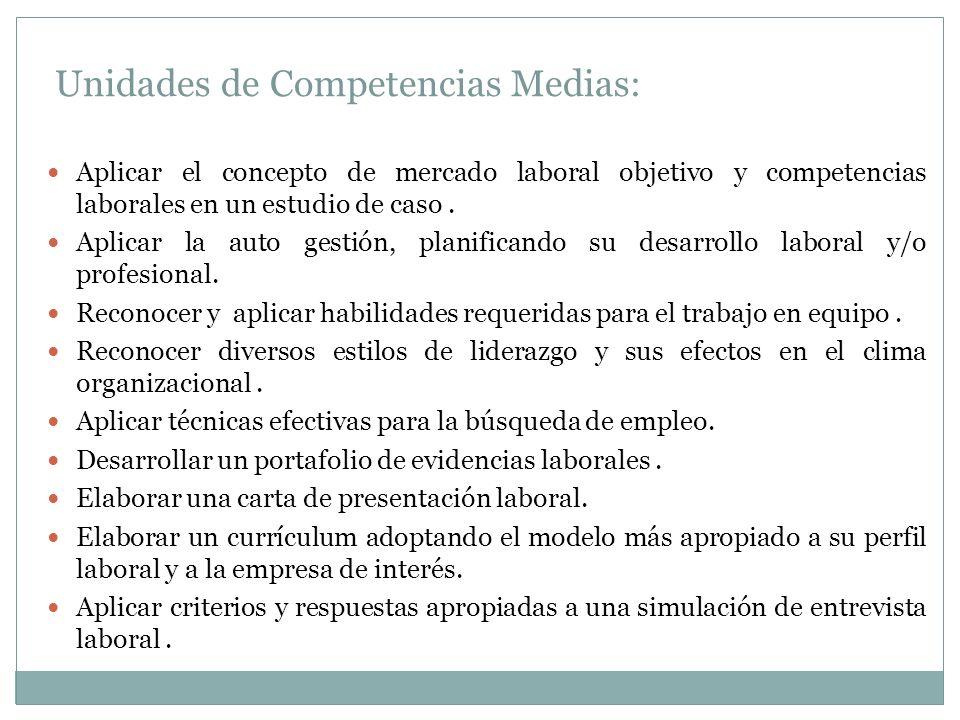 Unidades de Competencias Medias: Aplicar el concepto de mercado laboral objetivo y competencias laborales en un estudio de caso. Aplicar la auto gesti