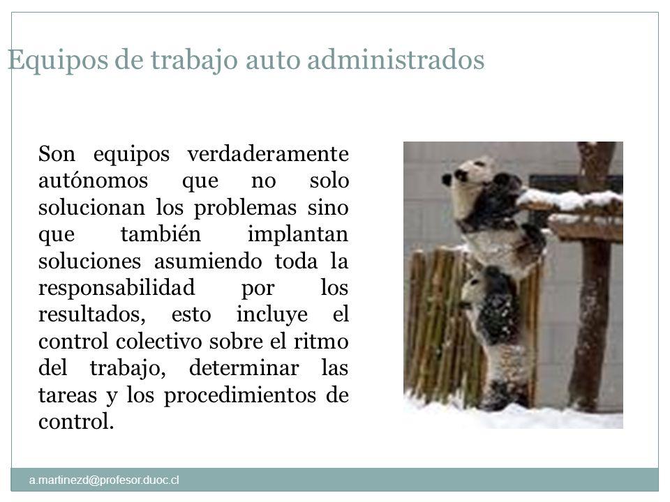 a.martinezd@profesor.duoc.cl Equipos de trabajo auto administrados Son equipos verdaderamente autónomos que no solo solucionan los problemas sino que
