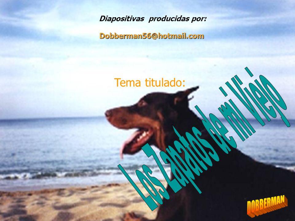 Diapositivas producidas por: Tema titulado: Dobberman56@hotmail.com