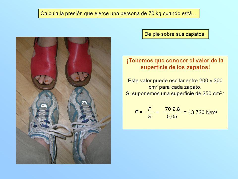 Calcula la presión que ejerce una persona de 70 kg cuando está… De pie sobre sus zapatos.