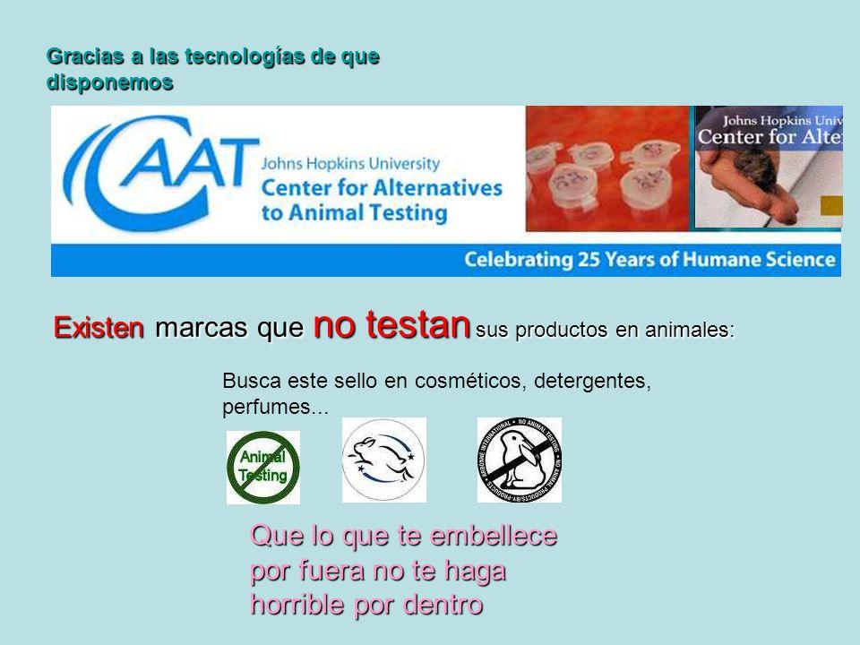 Gracias a las tecnologías de que disponemos Existen marcas que no testan sus productos en animales: Busca este sello en cosméticos, detergentes, perfu