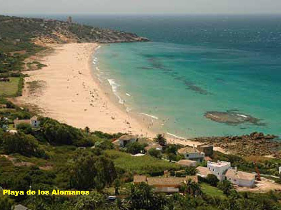 Un paseo por la costa gaditana De Cádiz a Soto Grande El Barrio: Gades Playa de los Alemanes No uses el ratón, pasa solo.