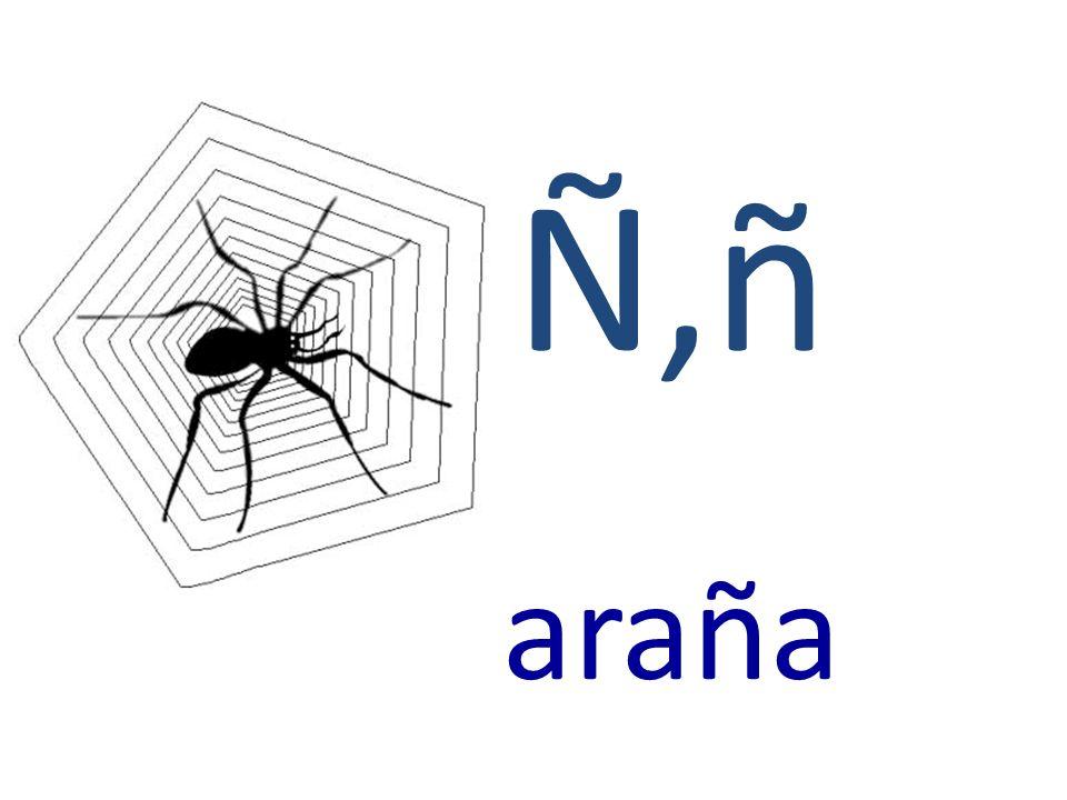 Ñ,ñ araña