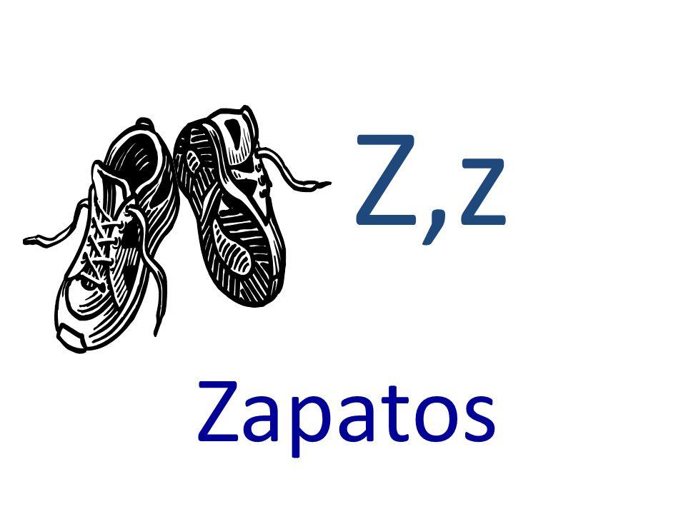Z,z Zapatos