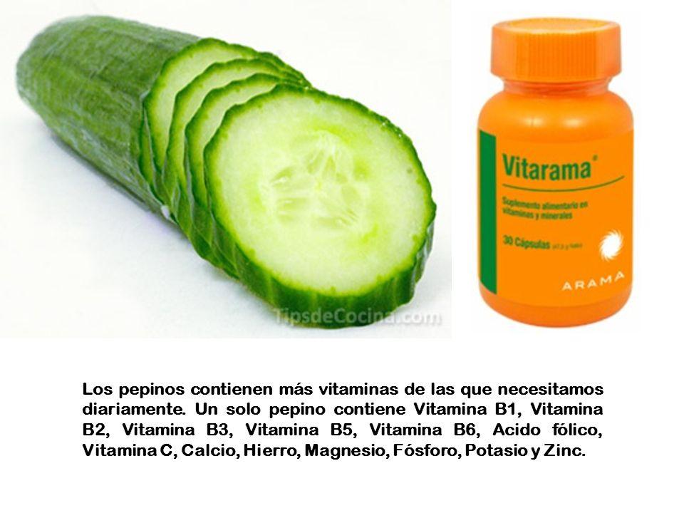 Los pepinos contienen más vitaminas de las que necesitamos diariamente.