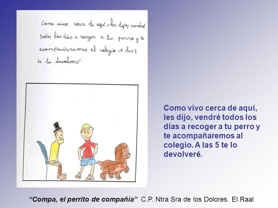 Compa, el perrito de compañía C.P. Ntra Sra de los Dolores.