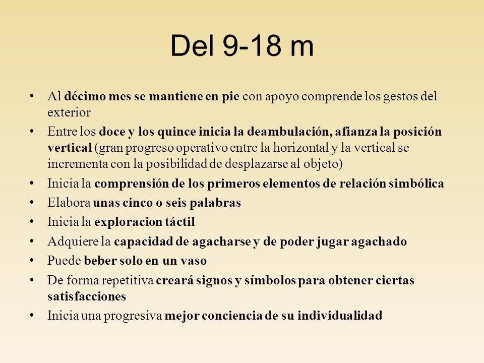 Del 9-18 m Al décimo mes se mantiene en pie con apoyo comprende los gestos del exterior Entre los doce y los quince inicia la deambulación, afianza la