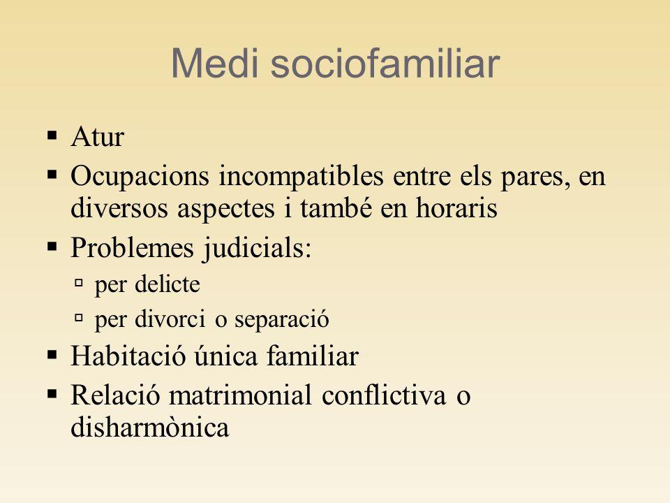 Medi sociofamiliar Atur Ocupacions incompatibles entre els pares, en diversos aspectes i també en horaris Problemes judicials: per delicte per divorci o separació Habitació única familiar Relació matrimonial conflictiva o disharmònica