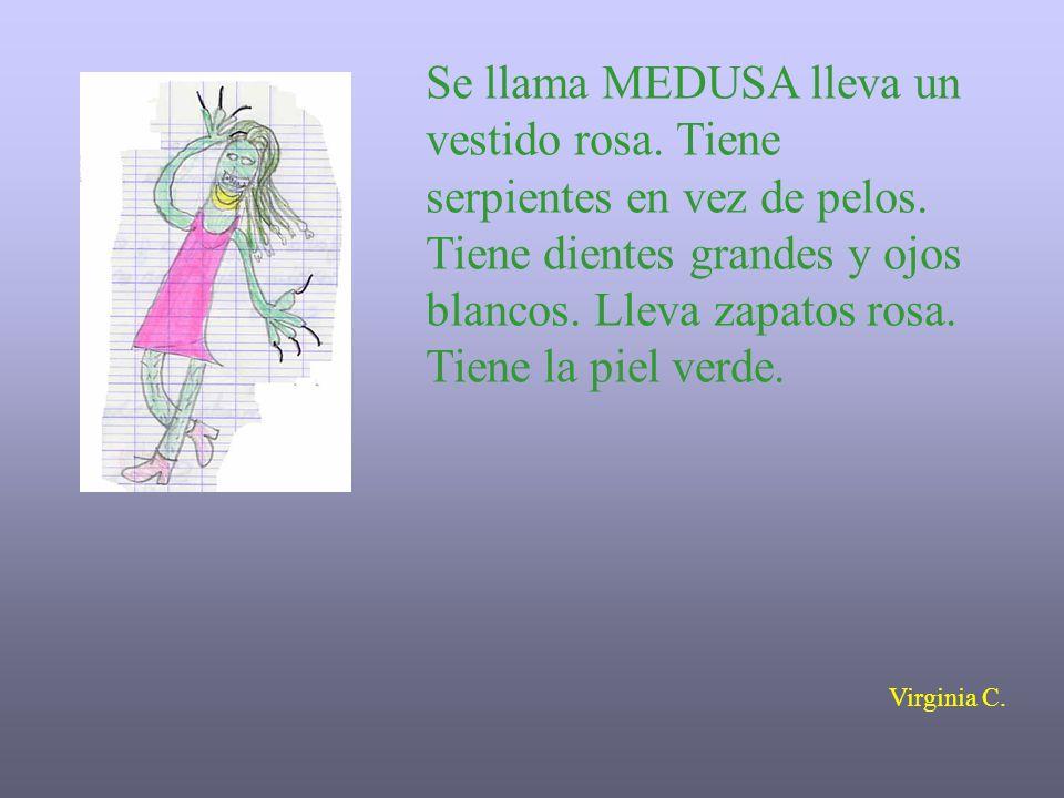 Se llama MEDUSA lleva un vestido rosa. Tiene serpientes en vez de pelos. Tiene dientes grandes y ojos blancos. Lleva zapatos rosa. Tiene la piel verde