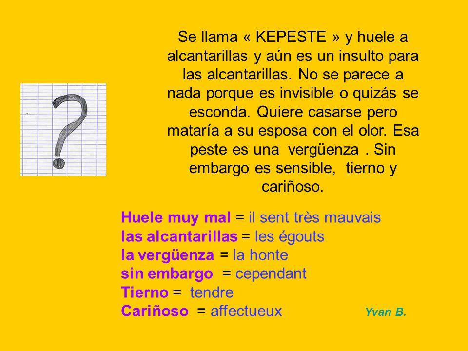 Huele muy mal = il sent très mauvais las alcantarillas = les égouts la vergüenza = la honte sin embargo = cependant Tierno = tendre Cariñoso = affectueux Yvan B.
