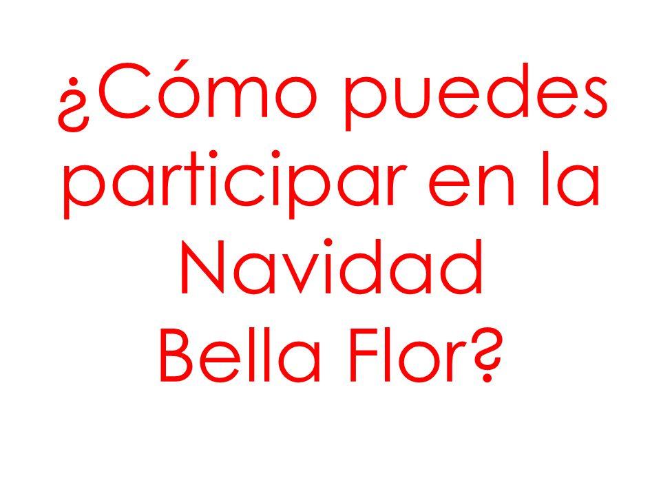 ¿Cómo puedes participar en la Navidad Bella Flor?