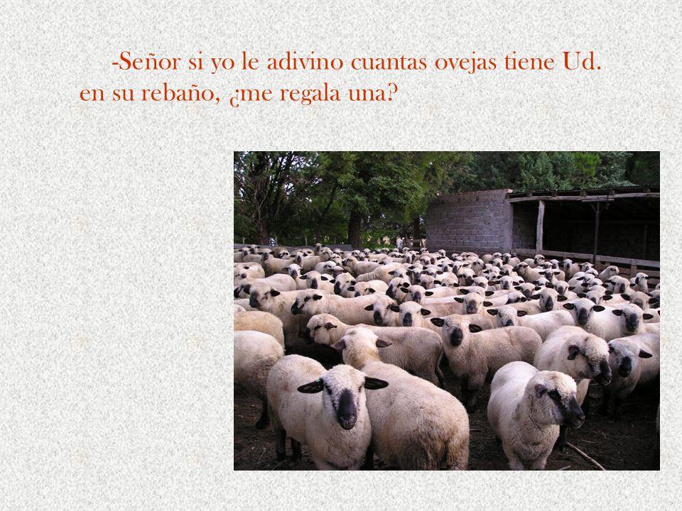 -Señor si yo le adivino cuantas ovejas tiene Ud. en su rebaño, ¿me regala una?