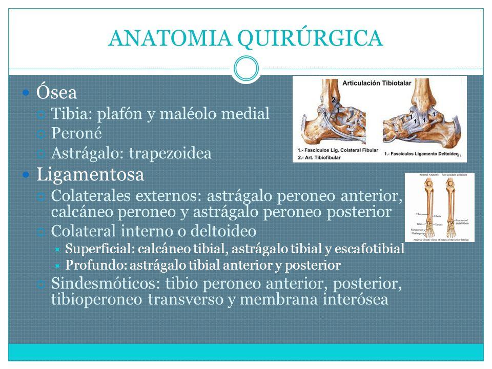 MOMENTO DE LA CIRUGÍA Tipo de fractura Tejidos blandos (1-7 días) Otras lesiones Problemas médicos Disponibilidad qx Coste Circunstancias sociales