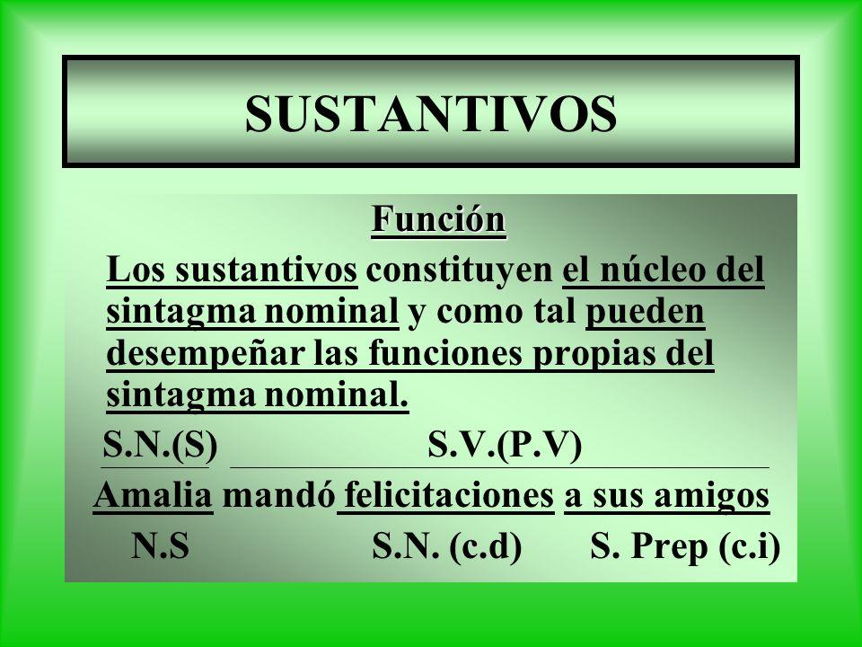 SUSTANTIVOS Función Los sustantivos constituyen el núcleo del sintagma nominal y como tal pueden desempeñar las funciones propias del sintagma nominal.