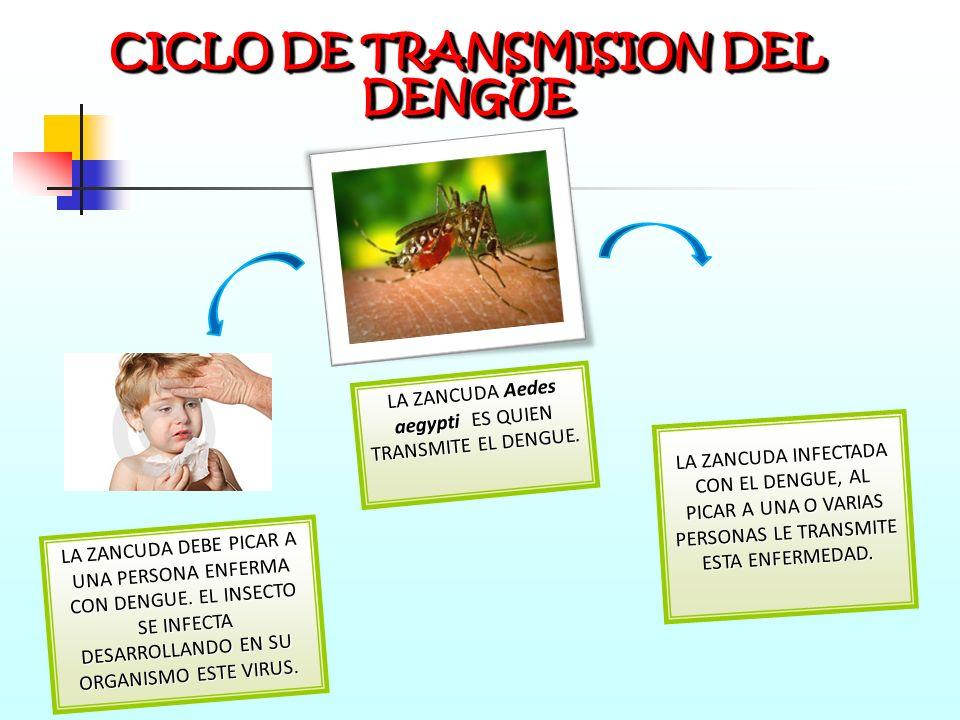 ES UNA ENFERMEDAD INFECCIOSA PRODUCIDA POR UN VIRUS, DE ALTO PODER DE PROPAGACIÓN Y ES TRANSMITIDA POR EL MOSQUITO Aedes aegypti, CONOCIDO TAMBIEN COM