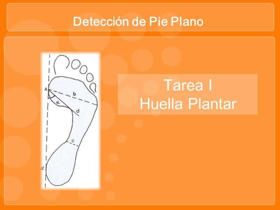 Detección de Pie Plano Tarea I Huella Plantar
