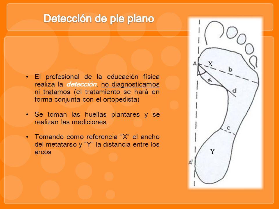 X Y El profesional de la educación física realiza la detección, no diagnosticamos ni tratamos (el tratamiento se hará en forma conjunta con el ortoped