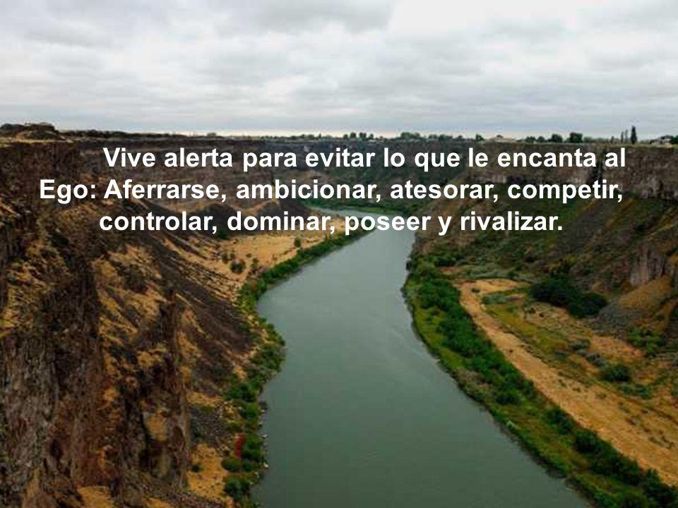 liliane_freire@hotmail.com lilifreire0505@yahoo.com.br www.lagodecristal.blogspot.com En el 2012 habrá desastres sólo para que la humanidad despierte y cambie.