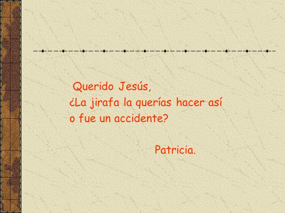 Querido Jesús, ¿La jirafa la querías hacer así o fue un accidente? Patricia.